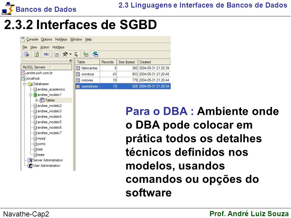 2.3 Linguagens e Interfaces de Bancos de Dados