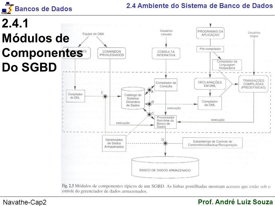 2.4.1 Módulos de Componentes Do SGBD
