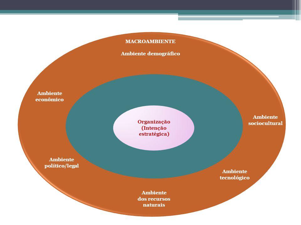 Ambiente sociocultural Organização (Intenção estratégica)