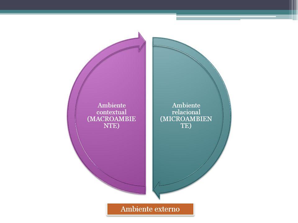 Ambiente externo Ambiente relacional (MICROAMBIENTE)