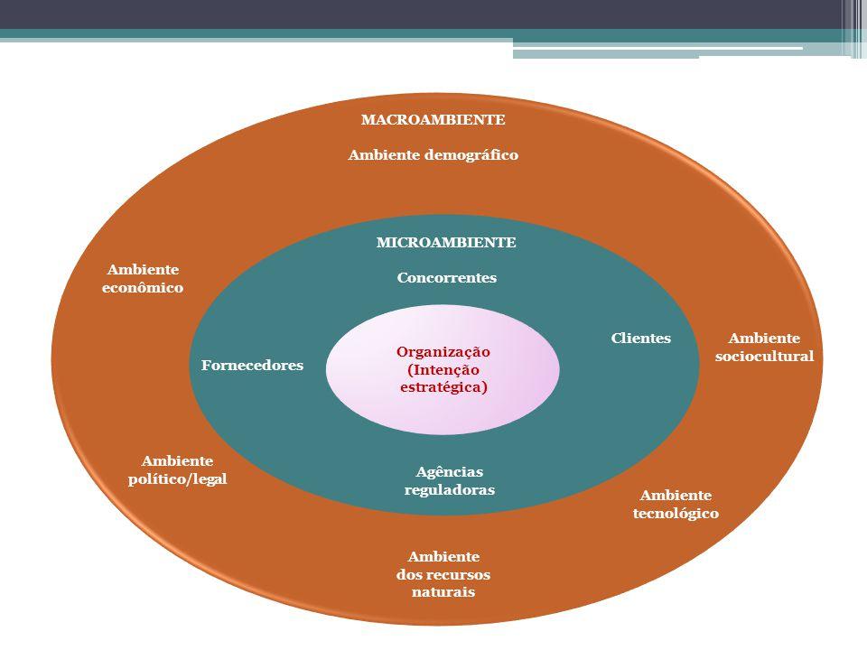 Ambiente sociocultural Organização (Intenção estratégica) Fornecedores