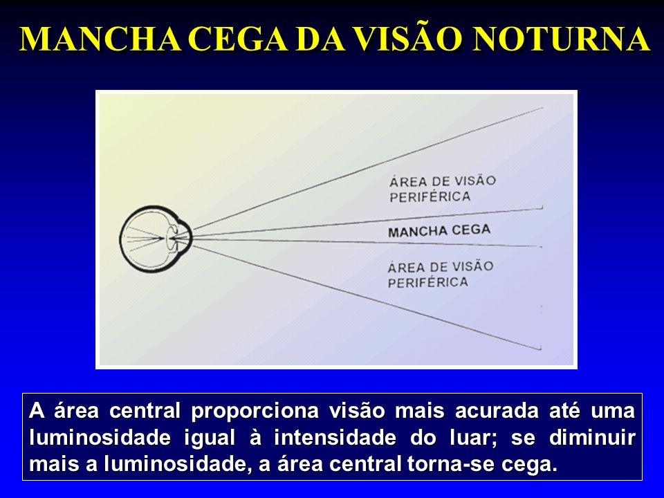 MANCHA CEGA DA VISÃO NOTURNA