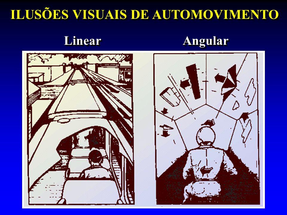 ILUSÕES VISUAIS DE AUTOMOVIMENTO