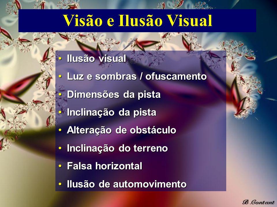 Visão e Ilusão Visual Ilusão visual Luz e sombras / ofuscamento
