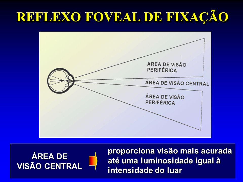 REFLEXO FOVEAL DE FIXAÇÃO