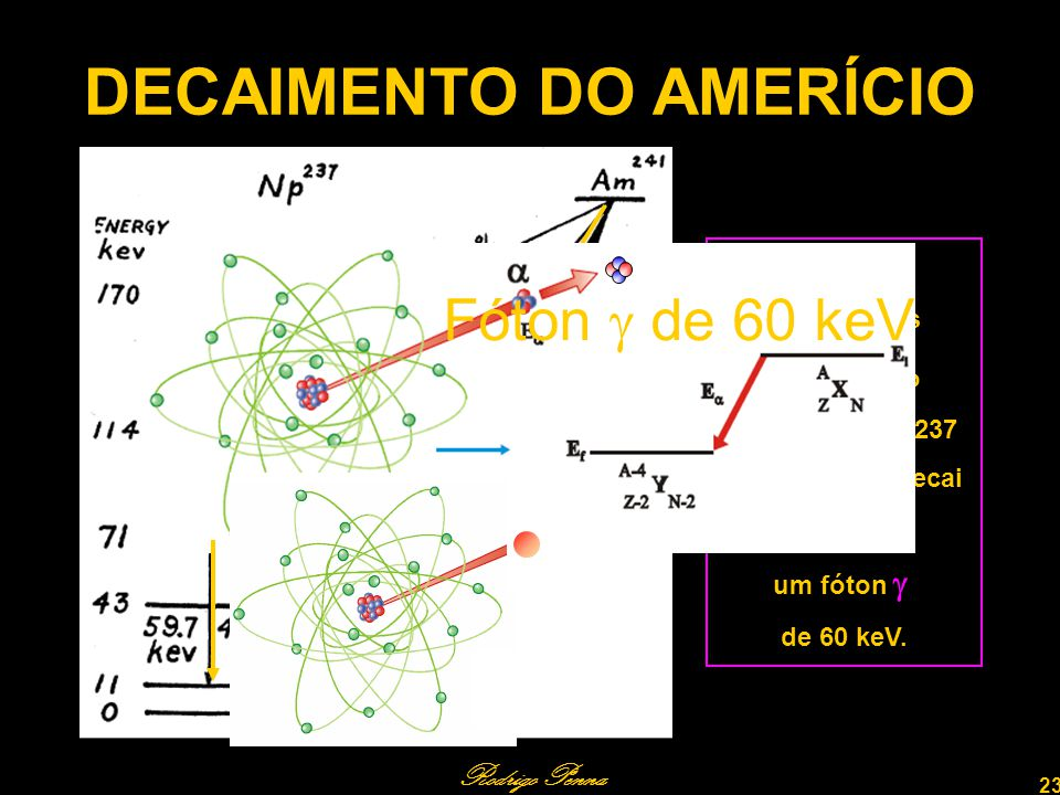 DECAIMENTO DO AMERÍCIO