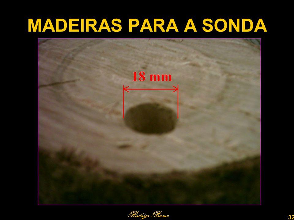 MADEIRAS PARA A SONDA Rodrigo Penna