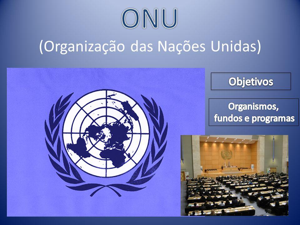 ONU (Organização das Nações Unidas)