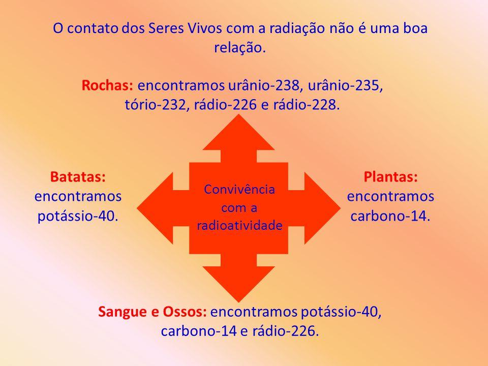 O contato dos Seres Vivos com a radiação não é uma boa relação.