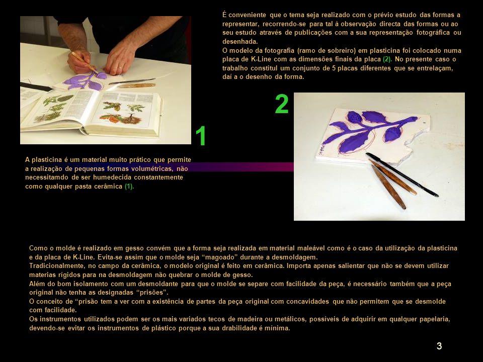 É conveniente que o tema seja realizado com o prévio estudo das formas a representar, recorrendo-se para tal à observação directa das formas ou ao seu estudo através de publicações com a sua representação fotográfica ou desenhada.