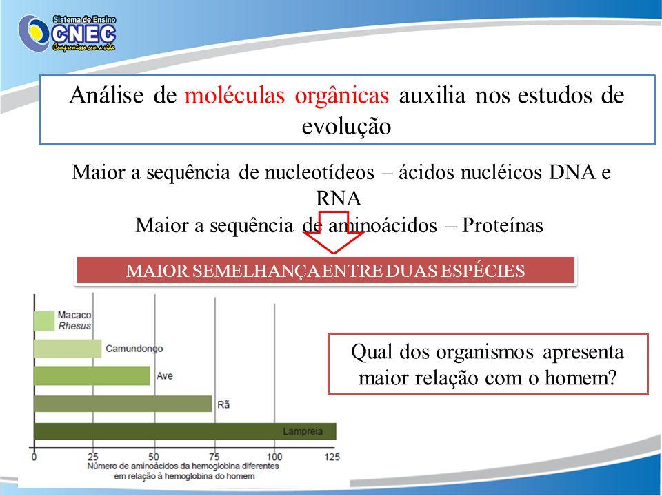 Análise de moléculas orgânicas auxilia nos estudos de evolução