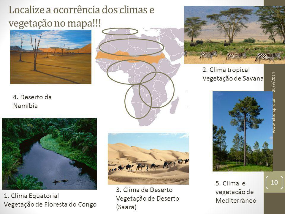 Localize a ocorrência dos climas e vegetação no mapa!!!