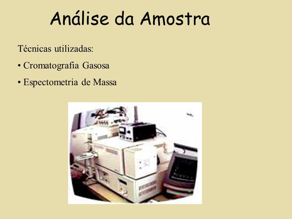 Análise da Amostra Técnicas utilizadas: Cromatografia Gasosa