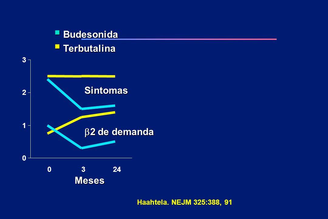 Budesonida Terbutalina Sintomas b2 de demanda Meses 3 2 1 24