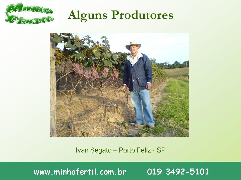 Alguns Produtores Ivan Segato – Porto Feliz - SP
