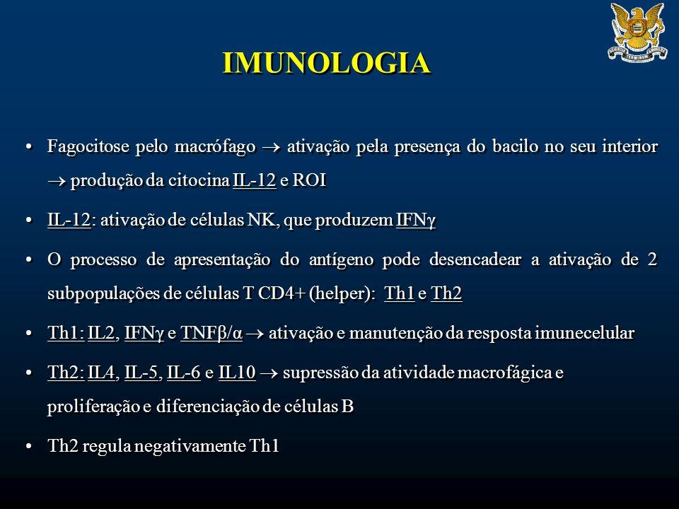 IMUNOLOGIA Fagocitose pelo macrófago  ativação pela presença do bacilo no seu interior  produção da citocina IL-12 e ROI.