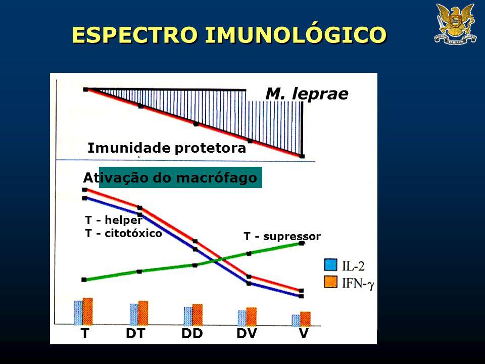 ESPECTRO IMUNOLÓGICO M. leprae Imunidade protetora
