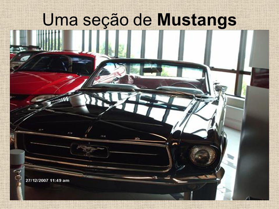 Uma seção de Mustangs