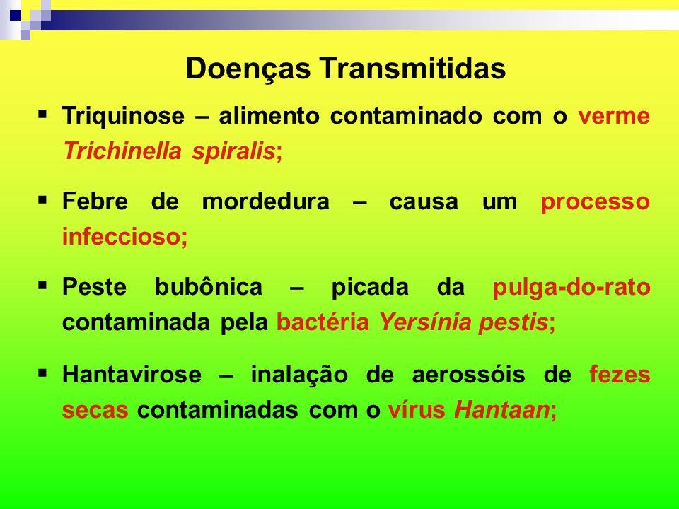 Doenças Transmitidas Triquinose – alimento contaminado com o verme Trichinella spiralis; Febre de mordedura – causa um processo infeccioso;