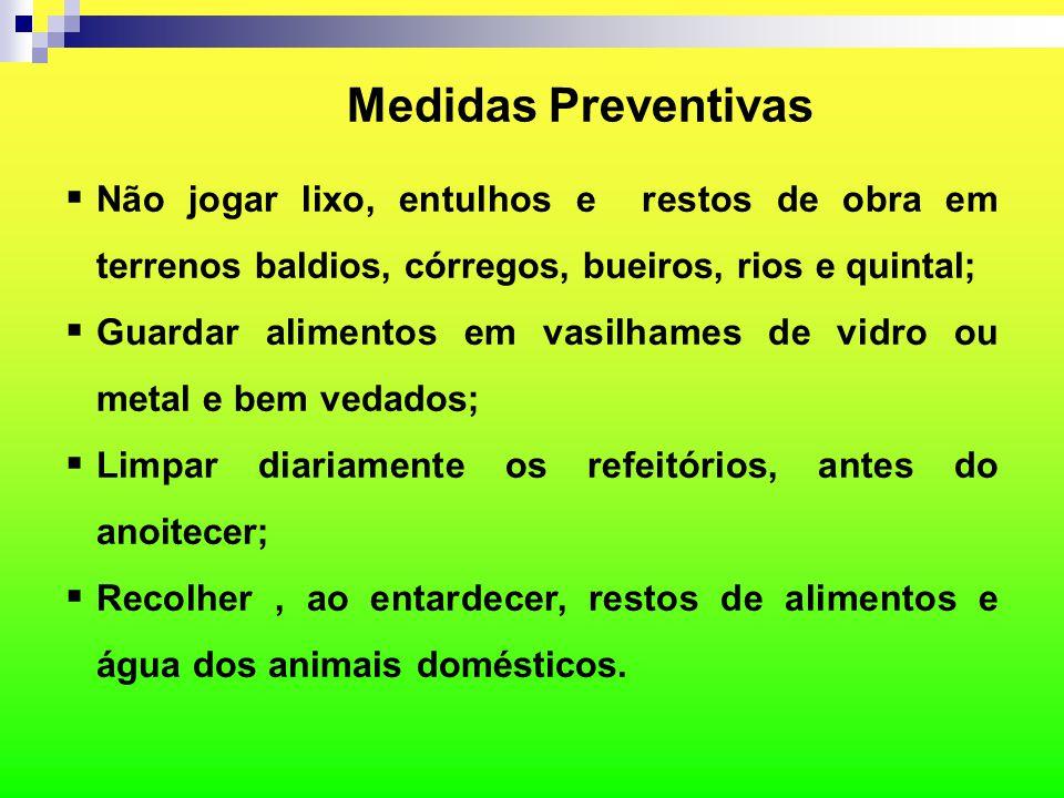 Medidas Preventivas Não jogar lixo, entulhos e restos de obra em terrenos baldios, córregos, bueiros, rios e quintal;