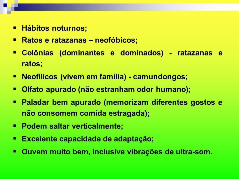 Hábitos noturnos; Ratos e ratazanas – neofóbicos; Colônias (dominantes e dominados) - ratazanas e ratos;