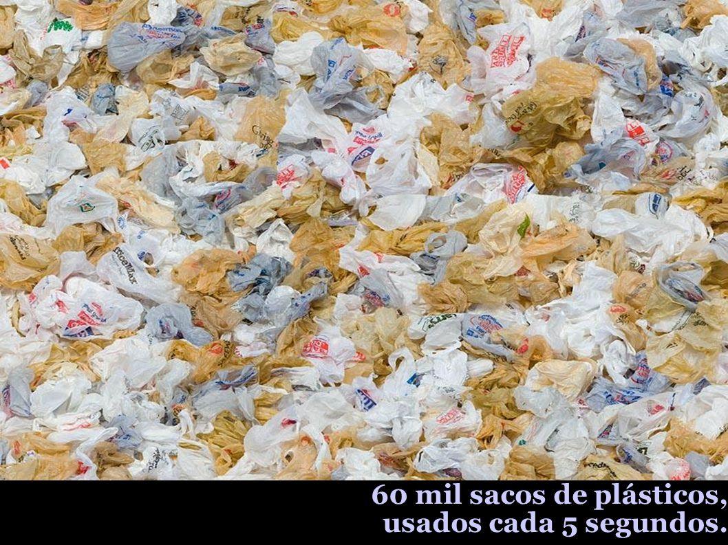 60 mil sacos de plásticos, usados cada 5 segundos.