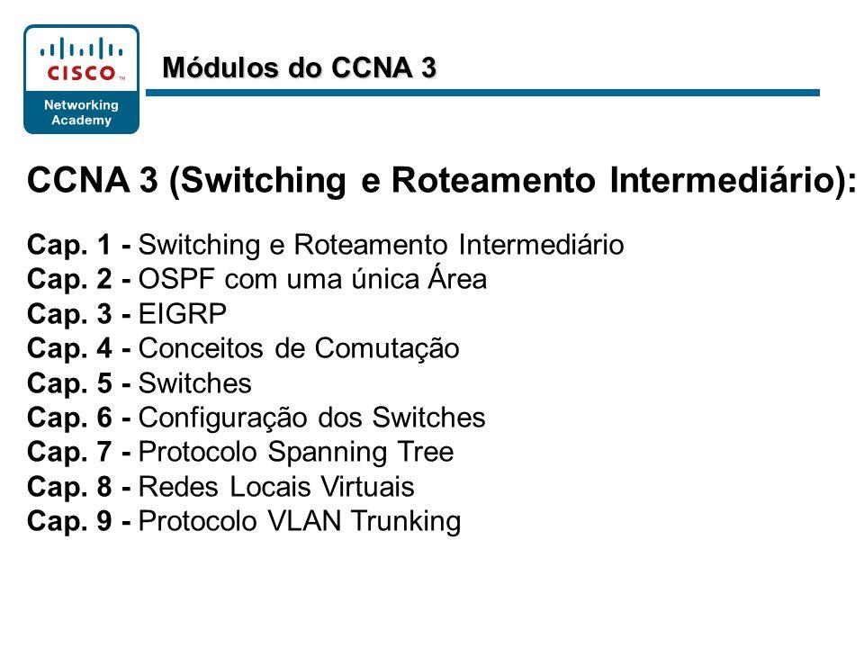 CCNA 3 (Switching e Roteamento Intermediário):