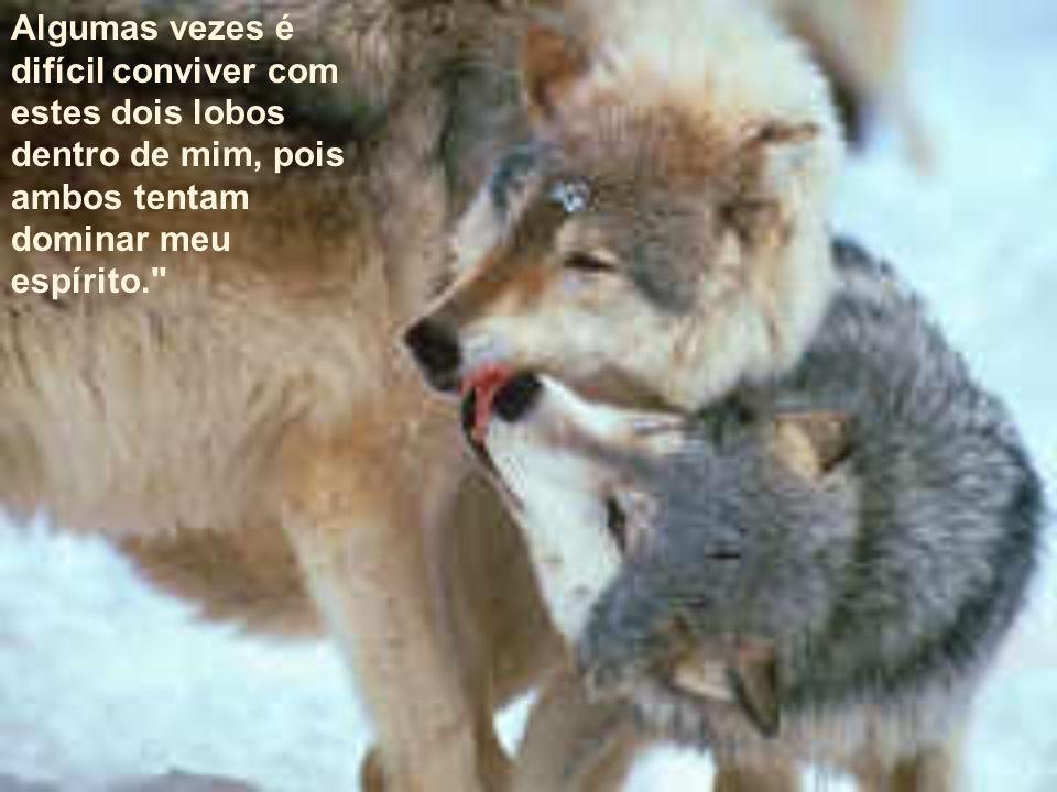 Algumas vezes é difícil conviver com estes dois lobos dentro de mim, pois ambos tentam dominar meu espírito.