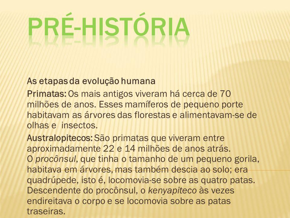 Pré-História As etapas da evolução humana