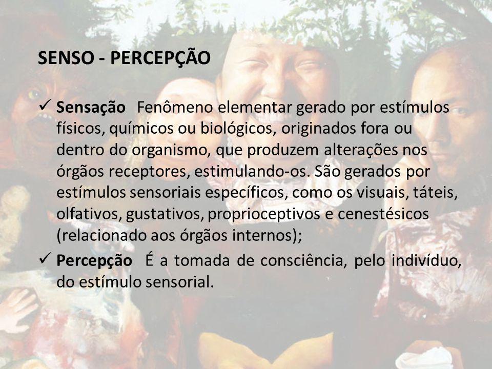 SENSO - PERCEPÇÃO
