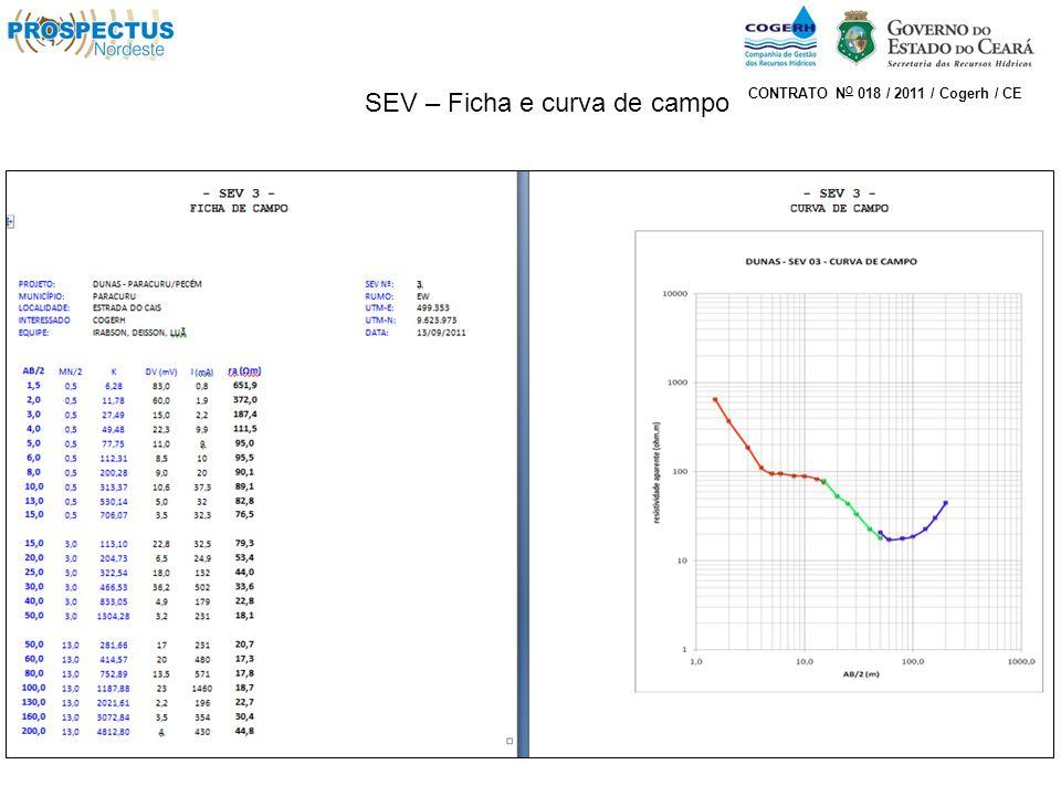 SEV – Ficha e curva de campo