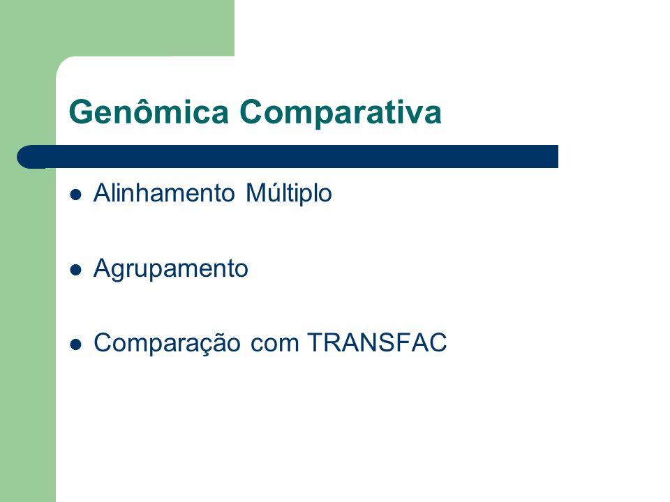 Genômica Comparativa Alinhamento Múltiplo Agrupamento