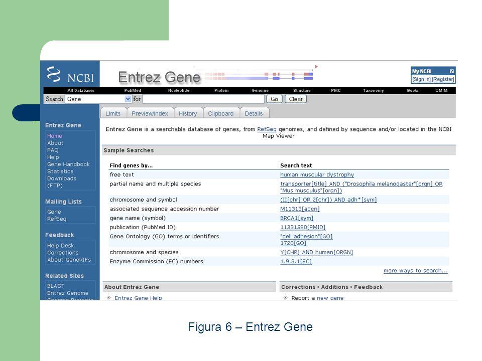 Figura 6 – Entrez Gene