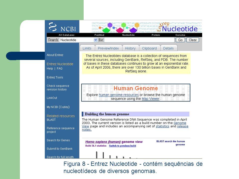 Figura 8 - Entrez Nucleotide - contém sequências de nucleotídeos de diversos genomas.