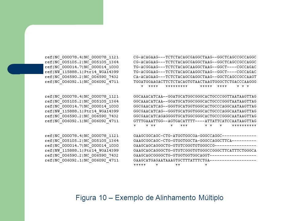 Figura 10 – Exemplo de Alinhamento Múltiplo