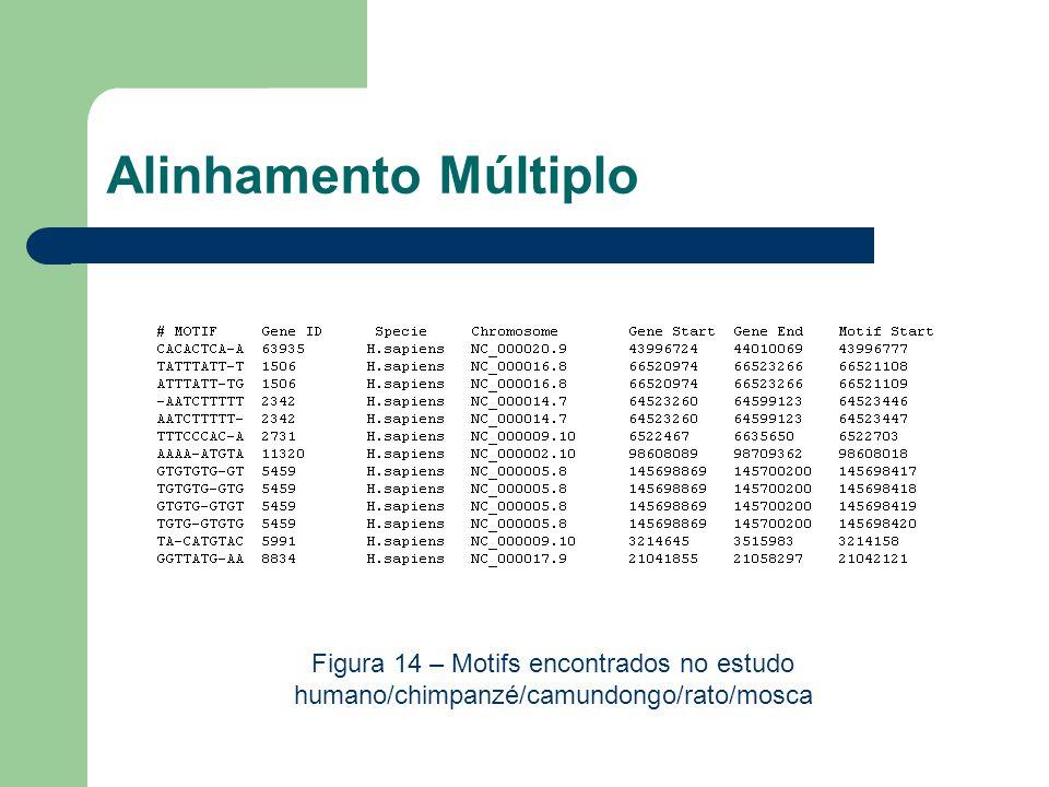 Alinhamento Múltiplo Figura 14 – Motifs encontrados no estudo humano/chimpanzé/camundongo/rato/mosca.
