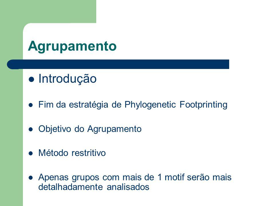 Agrupamento Introdução Fim da estratégia de Phylogenetic Footprinting