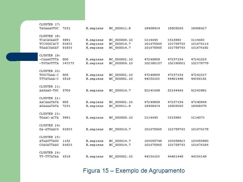 Figura 15 – Exemplo de Agrupamento