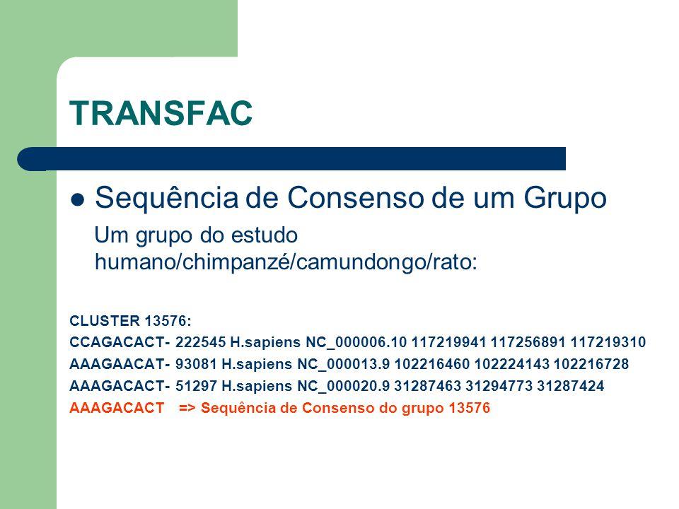 TRANSFAC Sequência de Consenso de um Grupo
