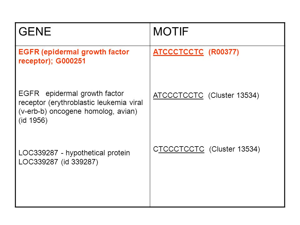 GENE MOTIF EGFR (epidermal growth factor receptor); G000251