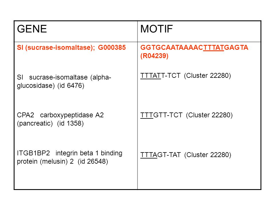 GENE MOTIF SI (sucrase-isomaltase); G000385