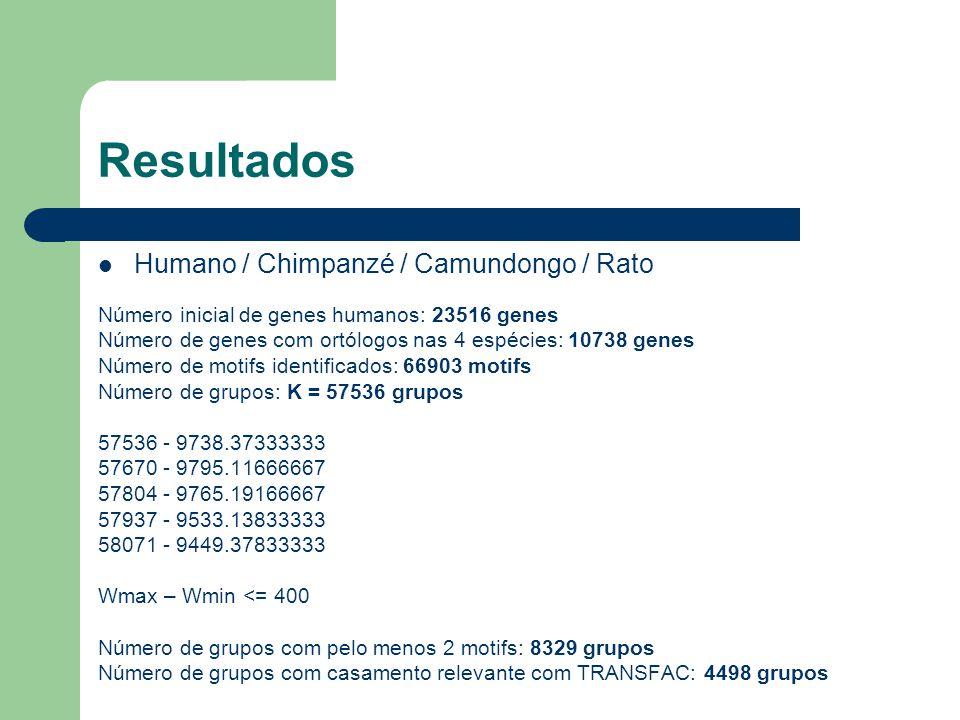 Resultados Humano / Chimpanzé / Camundongo / Rato