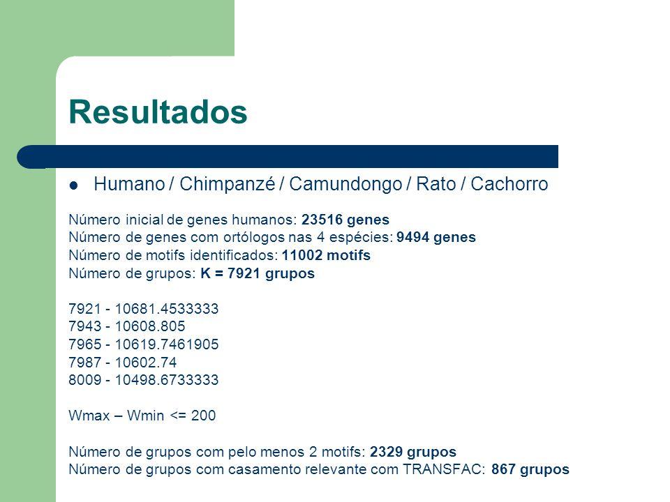 Resultados Humano / Chimpanzé / Camundongo / Rato / Cachorro