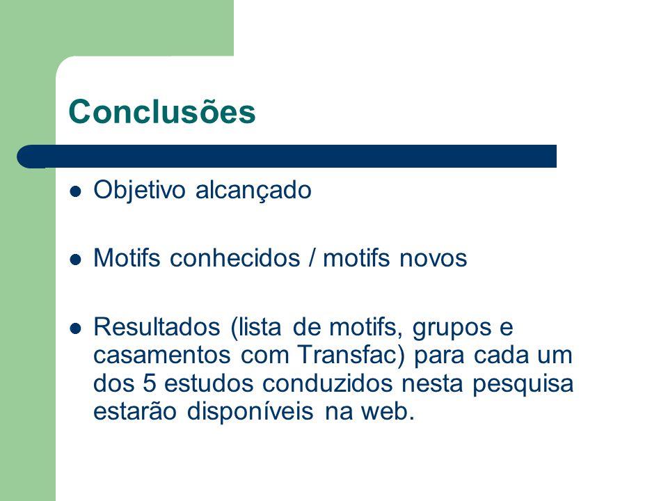 Conclusões Objetivo alcançado Motifs conhecidos / motifs novos