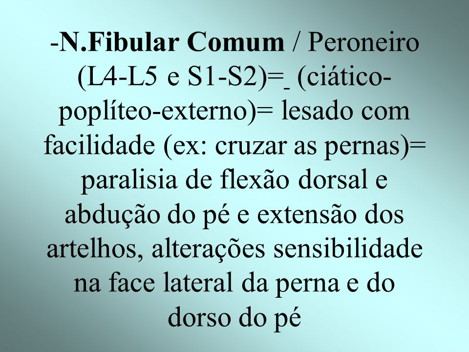 -N.Fibular Comum / Peroneiro (L4-L5 e S1-S2)= (ciático-poplíteo-externo)= lesado com facilidade (ex: cruzar as pernas)= paralisia de flexão dorsal e abdução do pé e extensão dos artelhos, alterações sensibilidade na face lateral da perna e do dorso do pé