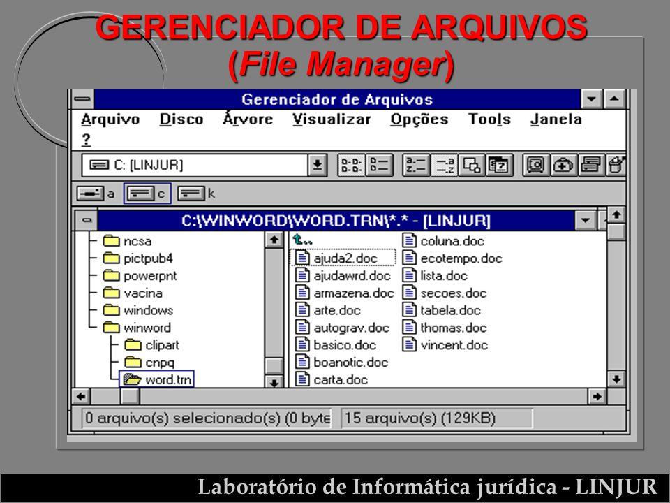 GERENCIADOR DE ARQUIVOS (File Manager)