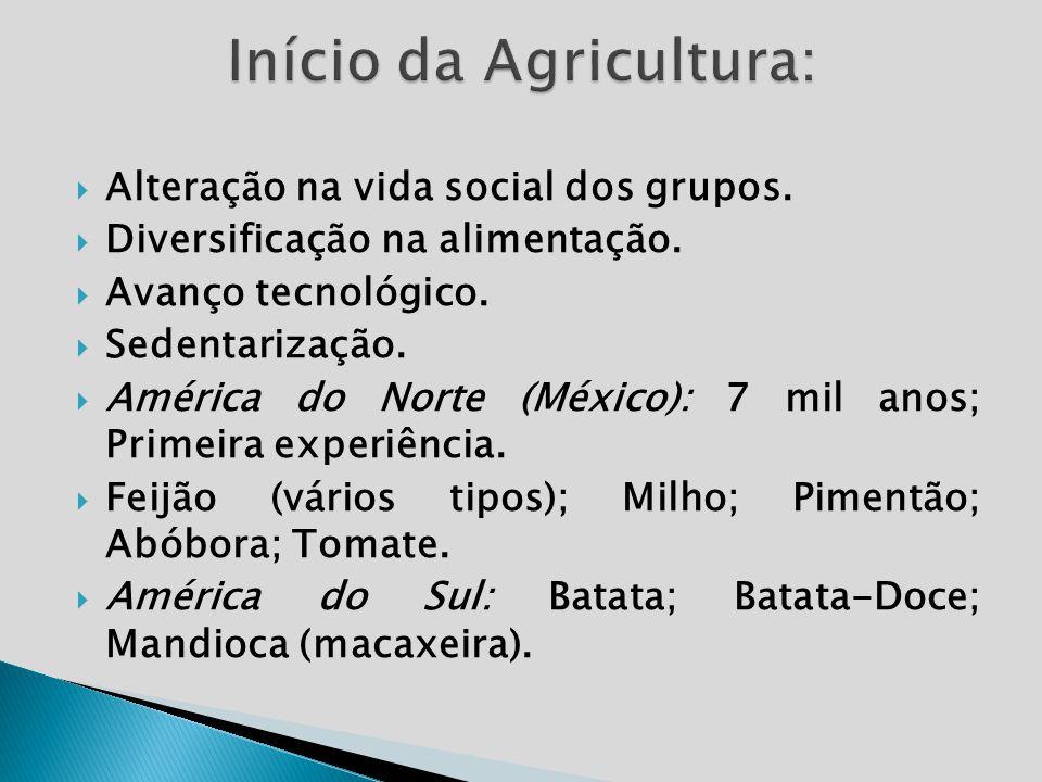 Início da Agricultura: