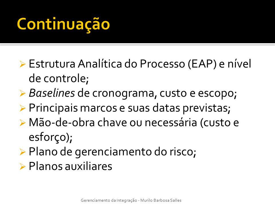 Continuação Estrutura Analítica do Processo (EAP) e nível de controle;