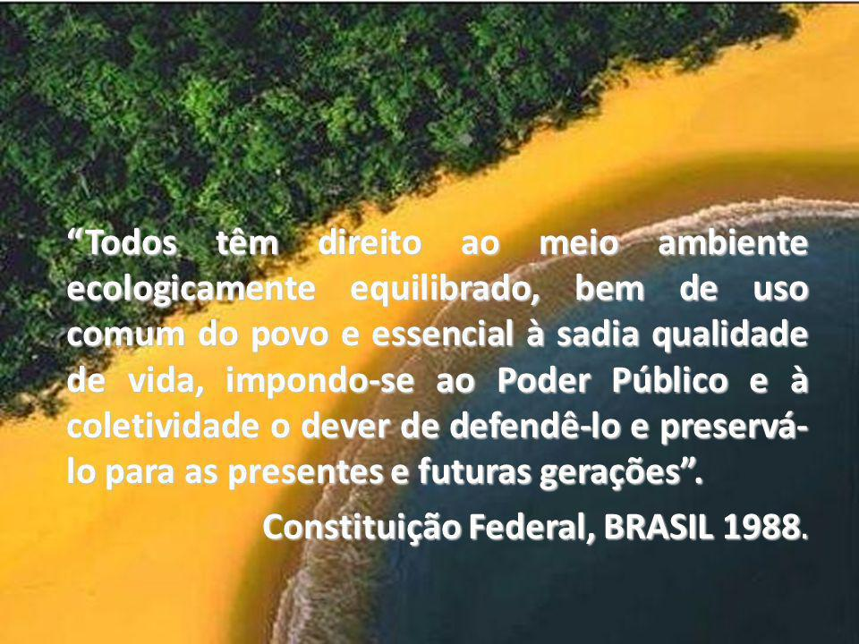Constituição Federal, BRASIL 1988.
