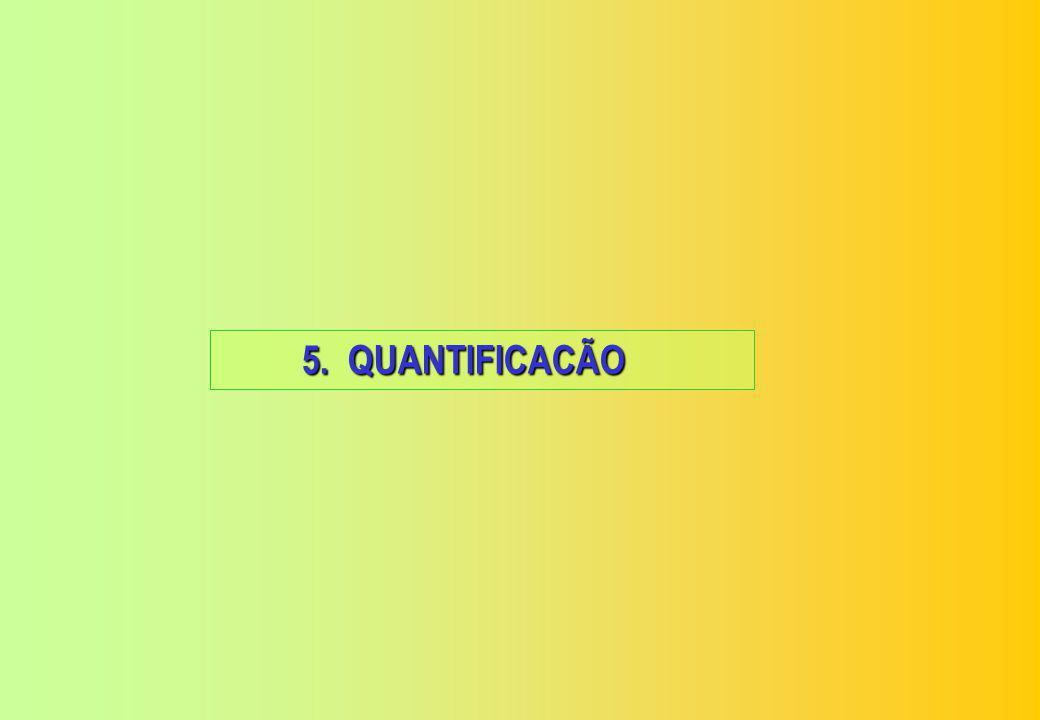 5. QUANTIFICACÃO
